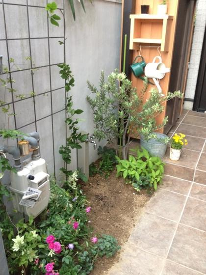 植物を楽しむ暮らし