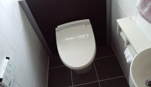 素敵なトイレに変わったけれど、一つ難点が・・・