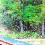 撮影時の通り雨