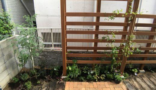 構造上も安心できる新築住宅「都会の小さな森の家」工事レポート